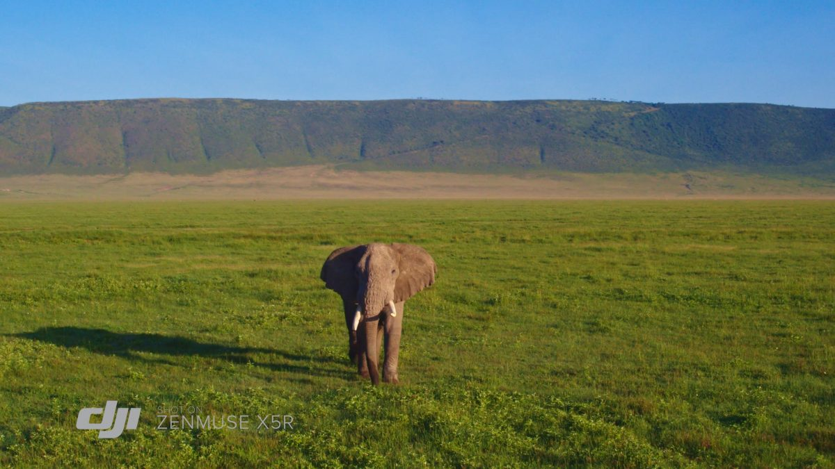 DJI Zenmuse X5R Highlights: Africa's Garden of Eden